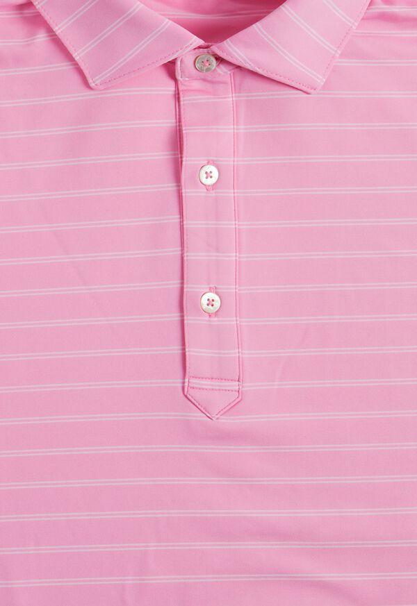 Double Stripe Performance Polo, image 2