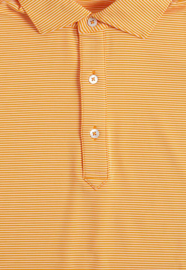 Stripe Performance Polo, image 2